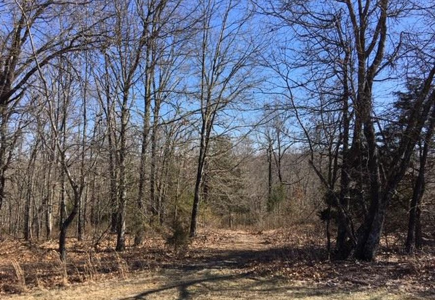 17446 Longview Road Elk Creek, MO 65464 - Photo 52
