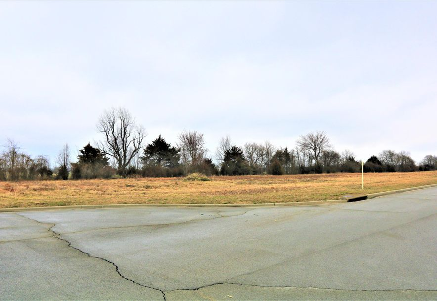 865 East Colter Drive Republic, MO 65738 - Photo 16