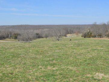Tbd Farm Road 60 Ash Grove, MO 65604 - Image 1