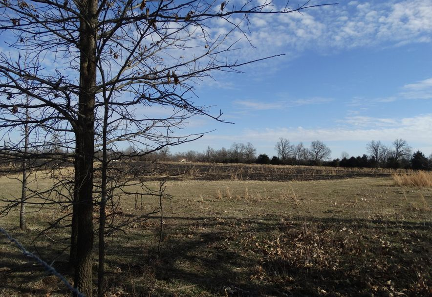 10 Acres West Jonathan Drive Marionville, MO 65705 - Photo 2