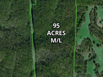 95 Ac Two Rivers Road Highlandville, MO 65669 - Image 1