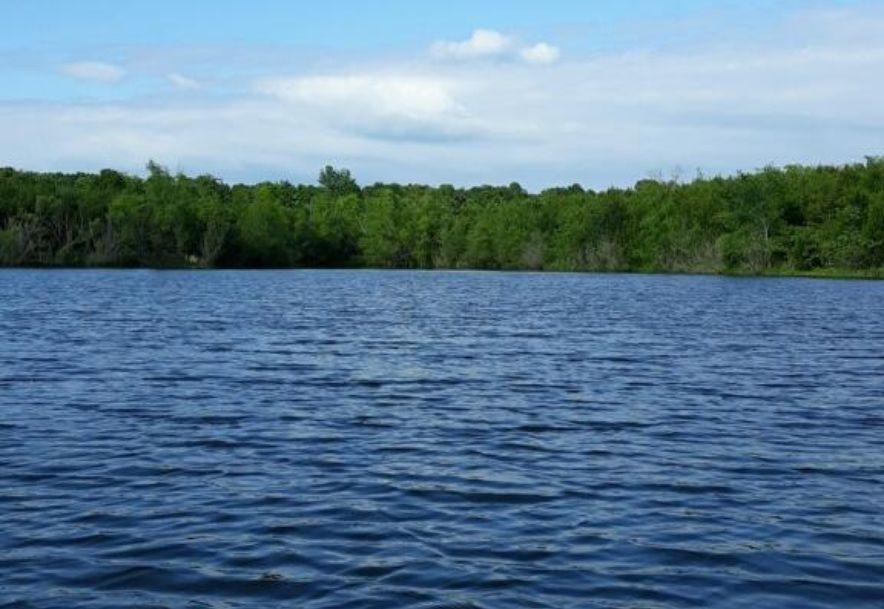 856 State Hwy J Marshfield, MO 65706 - Photo 45