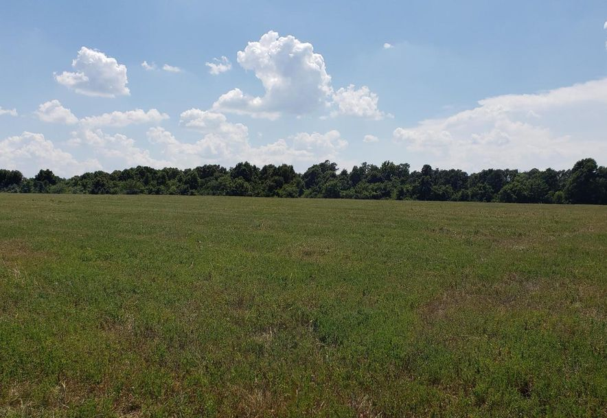 2097 State Hwy Pp Republic, MO 65738 - Photo 11