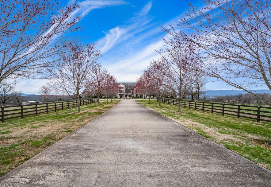 1753 Valley View Church Road Harrison, AR 72601 - Photo 4