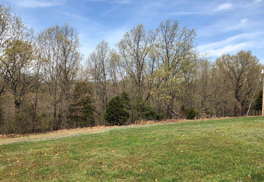 174 Phalen Lane Reeds Spring, MO 65737 - Photo 39