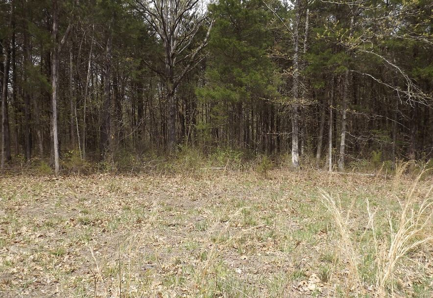 7b Lt Lost Acres Lampe, MO 65681 - Photo 11