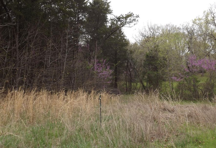7b Lt Lost Acres Lampe, MO 65681 - Photo 20