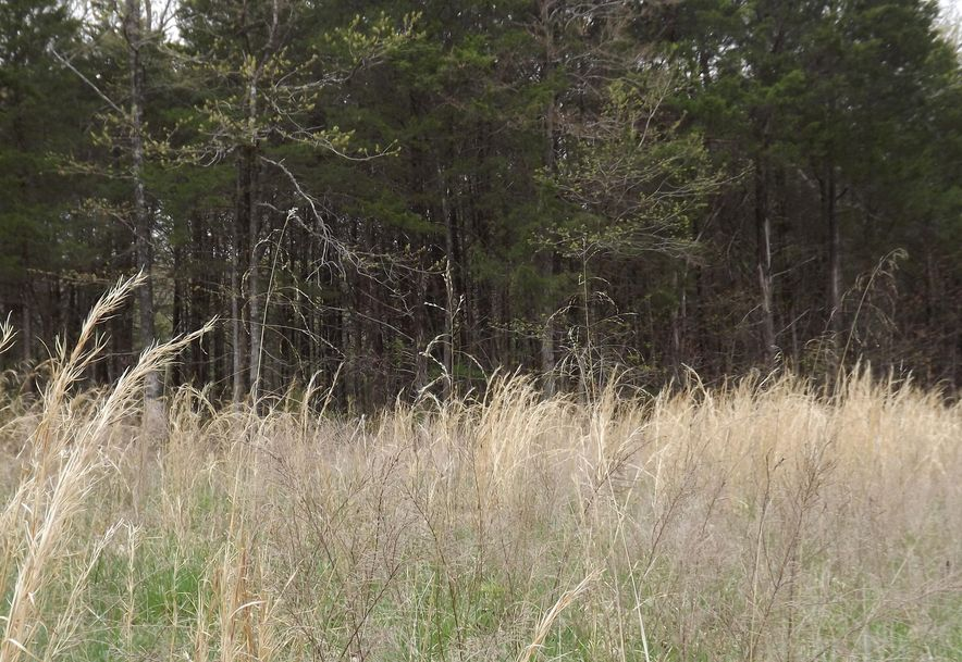 7b Lt Lost Acres Lampe, MO 65681 - Photo 22