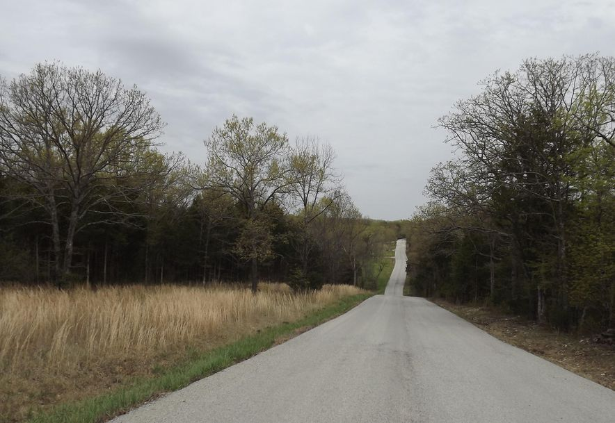 7b Lt Lost Acres Lampe, MO 65681 - Photo 4