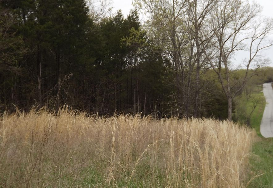 7b Lt Lost Acres Lampe, MO 65681 - Photo 7