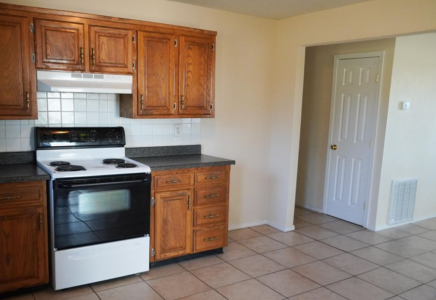 255 Santa Fe Road Rogersville, MO 65742 - Photo 50