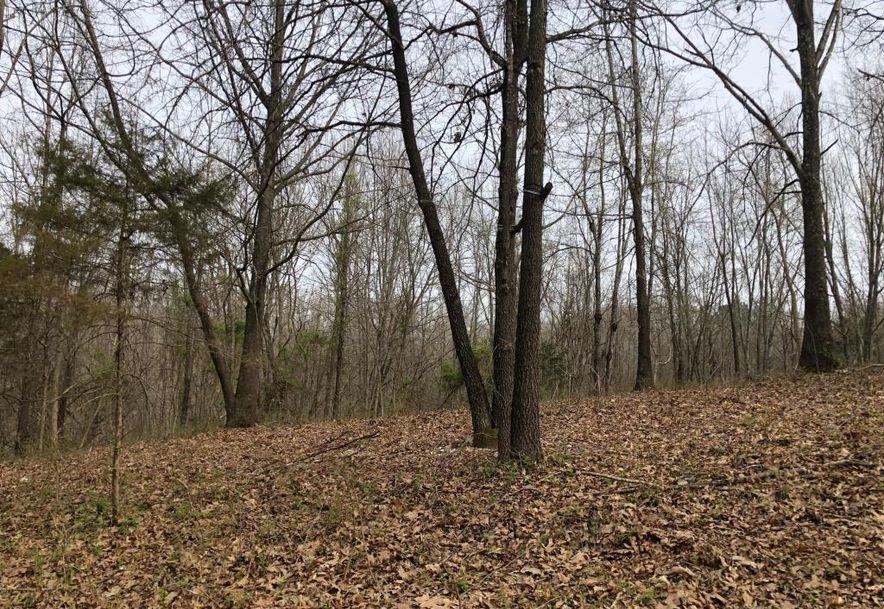 1250 Keystone Road Reeds Spring, MO 65737 - Photo 11