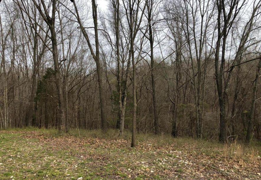 1250 Keystone Road Reeds Spring, MO 65737 - Photo 5