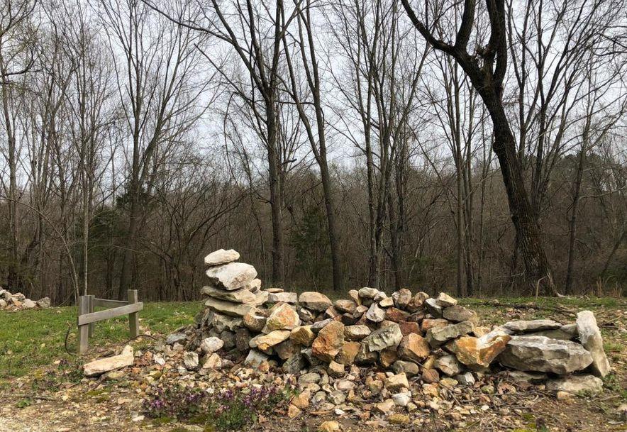 1250 Keystone Road Reeds Spring, MO 65737 - Photo 8