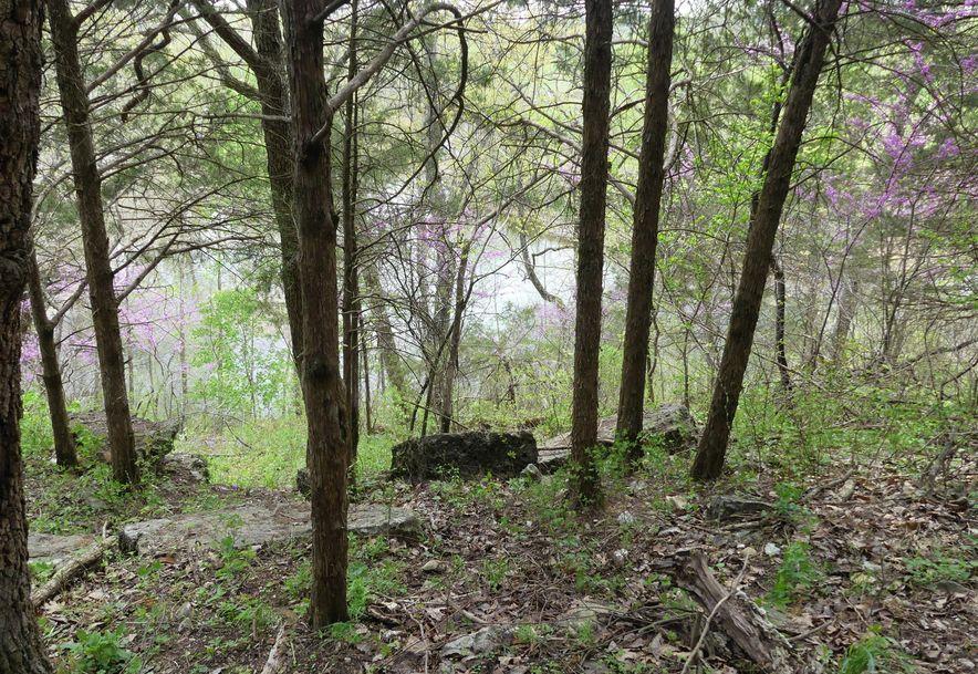 39 Redbud Cabin Lane Fair Grove, MO 65648 - Photo 42