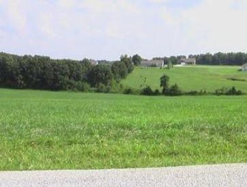 Lot 4 Ranch Estates Drive Highlandville, MO 65669 - Image 1