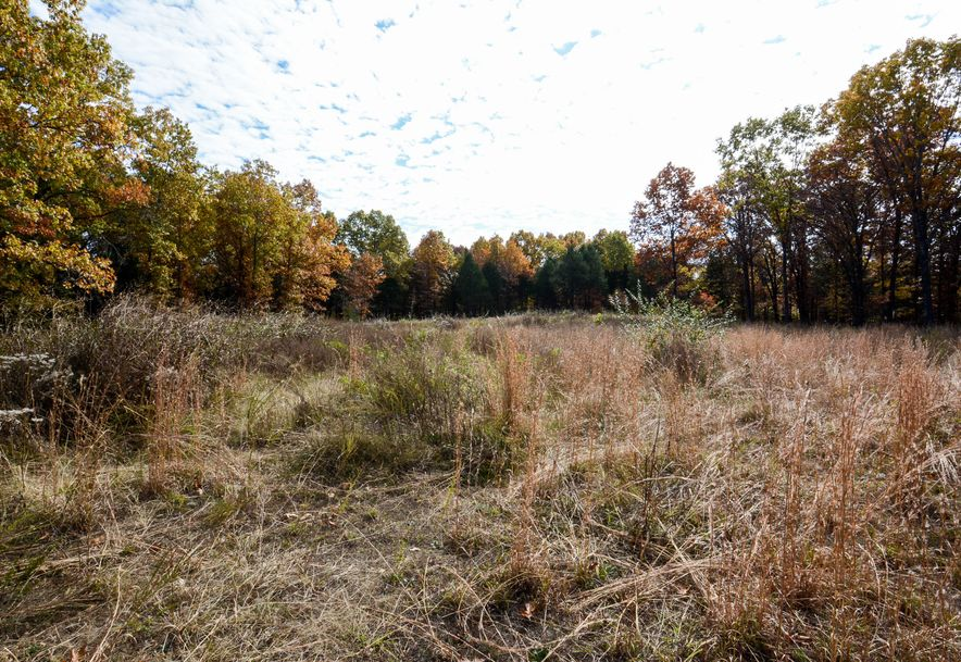Lot 2 Bee Creek Road Branson, MO 65616 - Photo 2