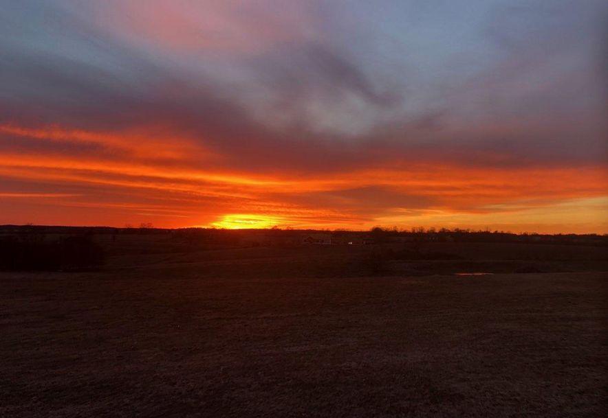 2654 Terrell Valley Drive Republic, MO 65738 - Photo 4