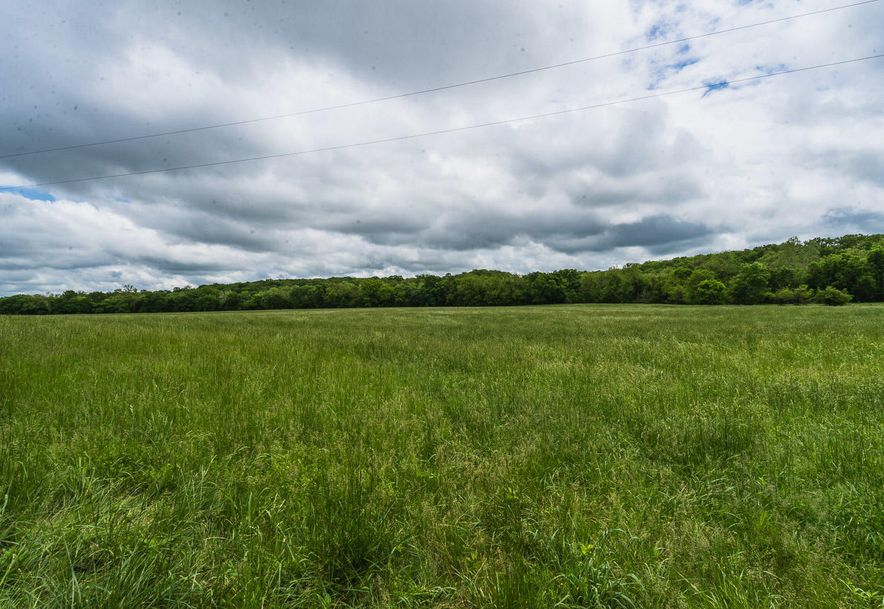000 County Road 831 Gainesville, MO 65655 - Photo 11