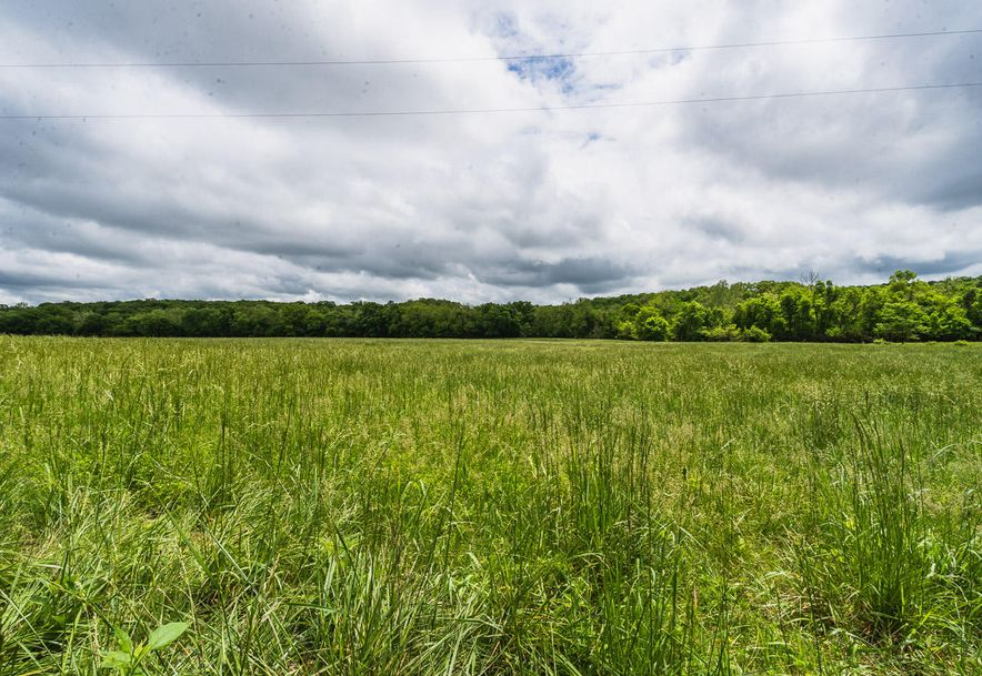 000 County Road 831 Gainesville, MO 65655 - Photo 3