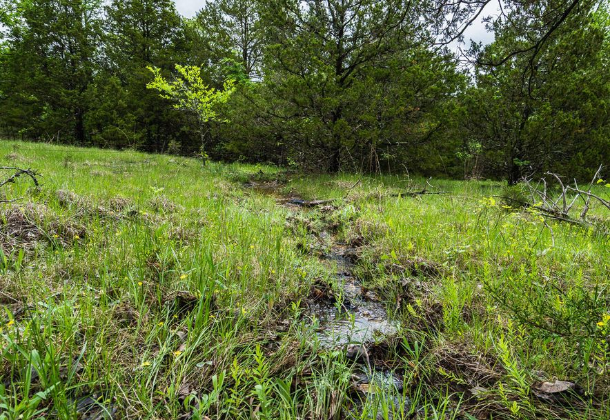 000 County Road 831 Gainesville, MO 65655 - Photo 24