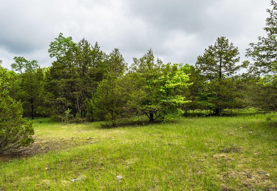 000 County Road 831 Gainesville, MO 65655 - Photo 25