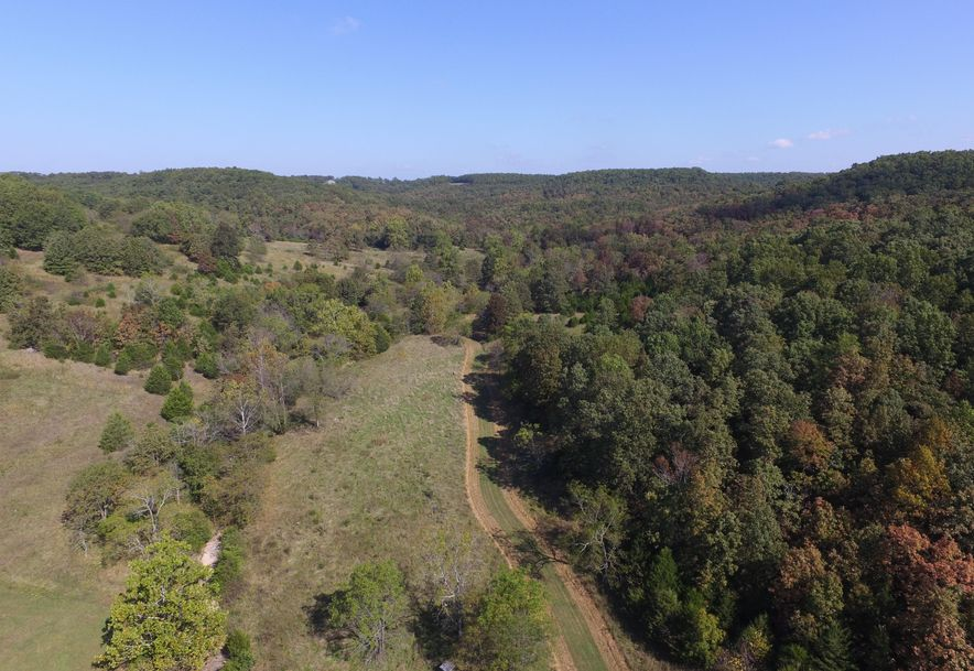 2985 Matney Hollow Road Seymour, MO 65746 - Photo 163