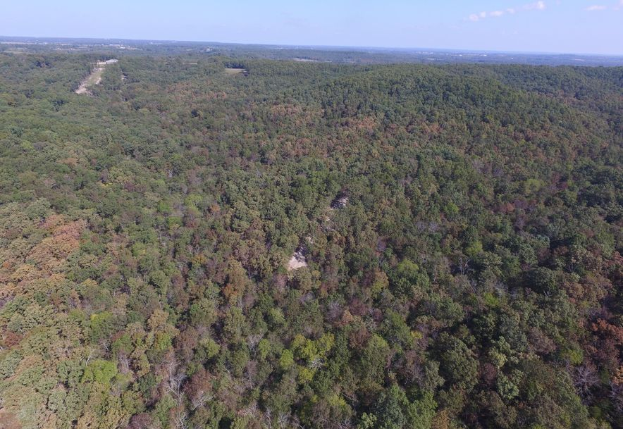 2985 Matney Hollow Road Seymour, MO 65746 - Photo 171