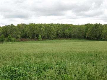Tbd Holt Springs Road Marionville, MO 65705 - Image 1