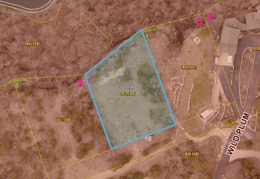 Lot 7 Sasser View Lane Reeds Spring, MO 65737 - Photo 4