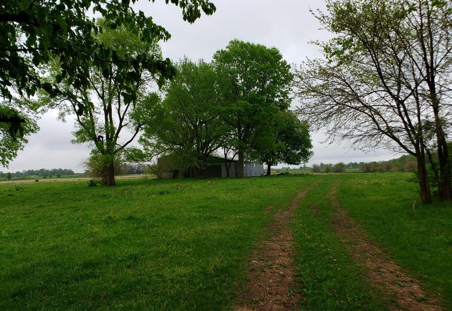 0 State Hwy 125 Strafford, MO 65757 - Photo 1