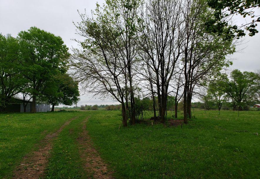 0 State Hwy 125 Strafford, MO 65757 - Photo 3