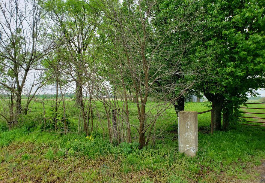 0 State Hwy 125 Strafford, MO 65757 - Photo 4
