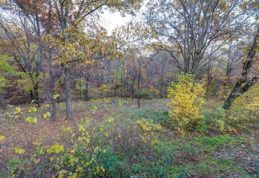 217 Springview Drive Highlandville, MO 65669 - Photo 24