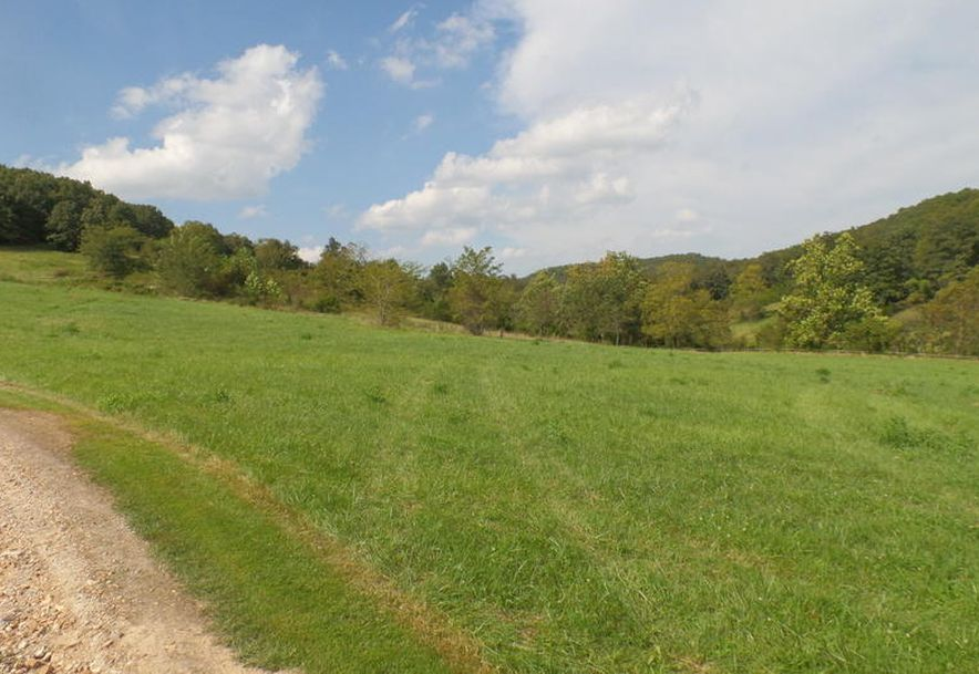 2985-A Matney Hollow Road Seymour, MO 65746 - Photo 62