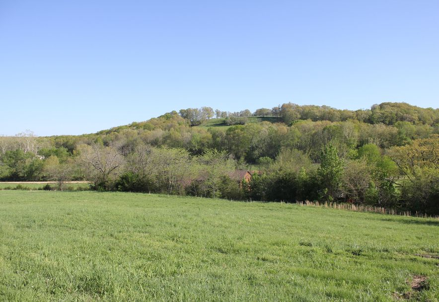 2985 Matney Hollow Road Seymour, MO 65746 - Photo 98