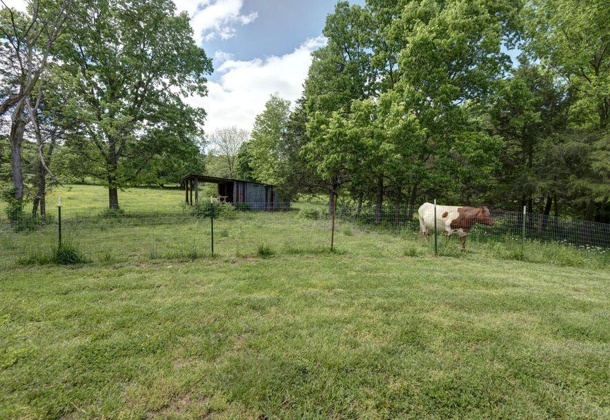 8604 North Farm Rd 197 Fair Grove, MO 65648 - Photo 37