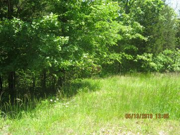 Lot 9 Tribute Falls Cassville, MO 65623 - Image 1
