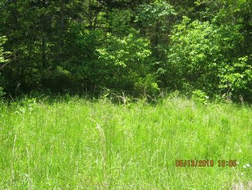Lot 10 Tribute Falls Cassville, MO 65625 - Image 1