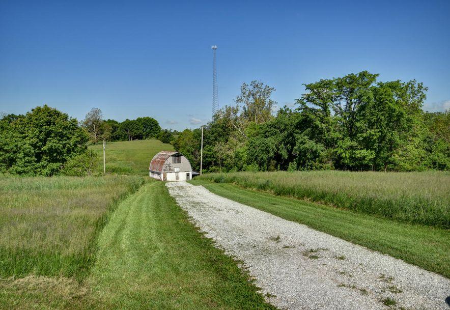 372 Petunia Lane Clever, MO 65631 - Photo 41