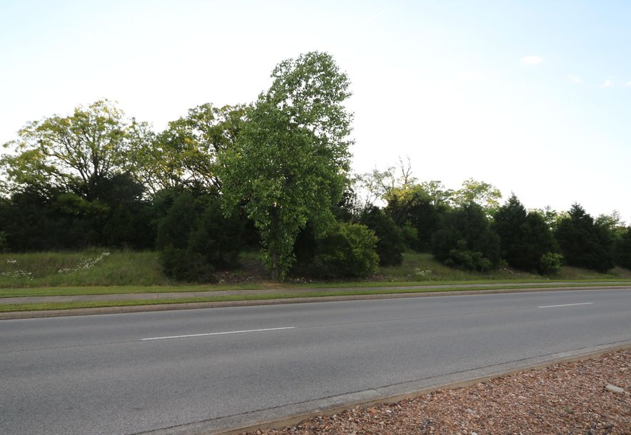 Tbd Gretna Road Branson, MO 65616 - Photo 2
