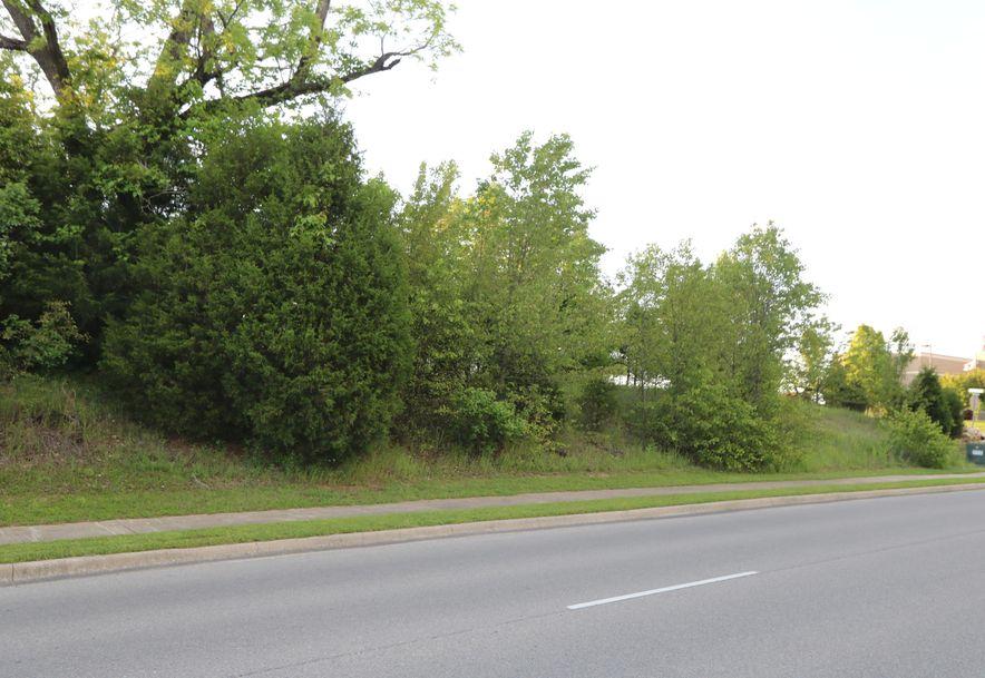 Tbd Gretna Road Branson, MO 65616 - Photo 8