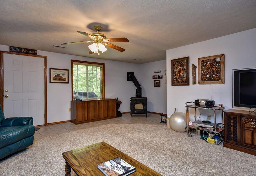 319 Rebas Oak Loop Fordland, MO 65652 - Photo 33
