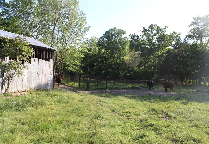 4488 West State Hwy 76 Ava, MO 65608 - Photo 6
