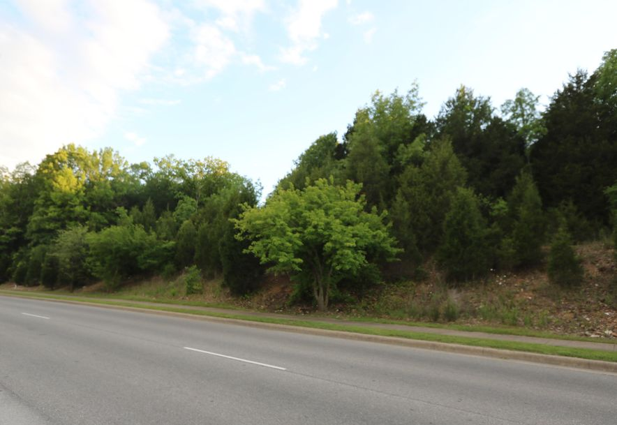 Tbd Gretna Road Branson, MO 65616 - Photo 4