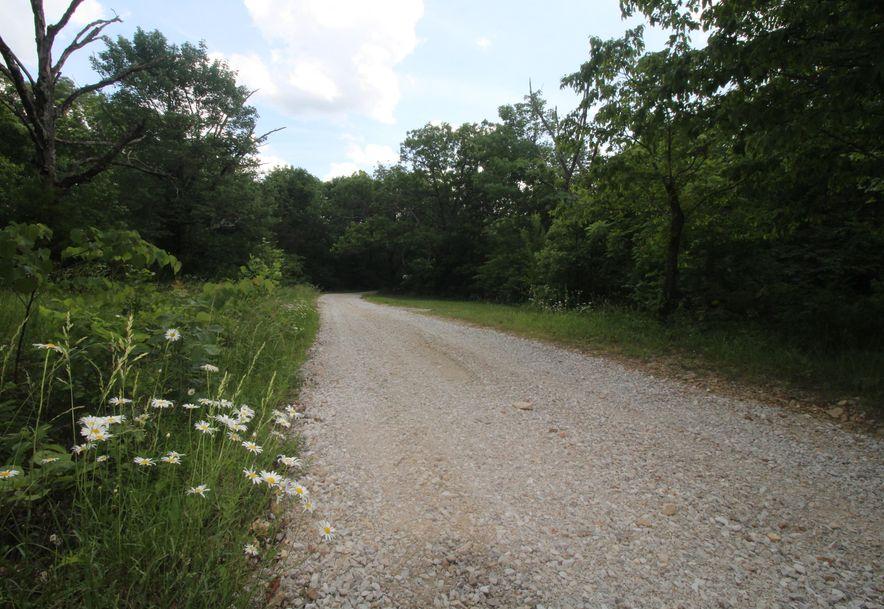 8901 North Beards Bluff Lane Fair Grove, MO 65648 - Photo 44