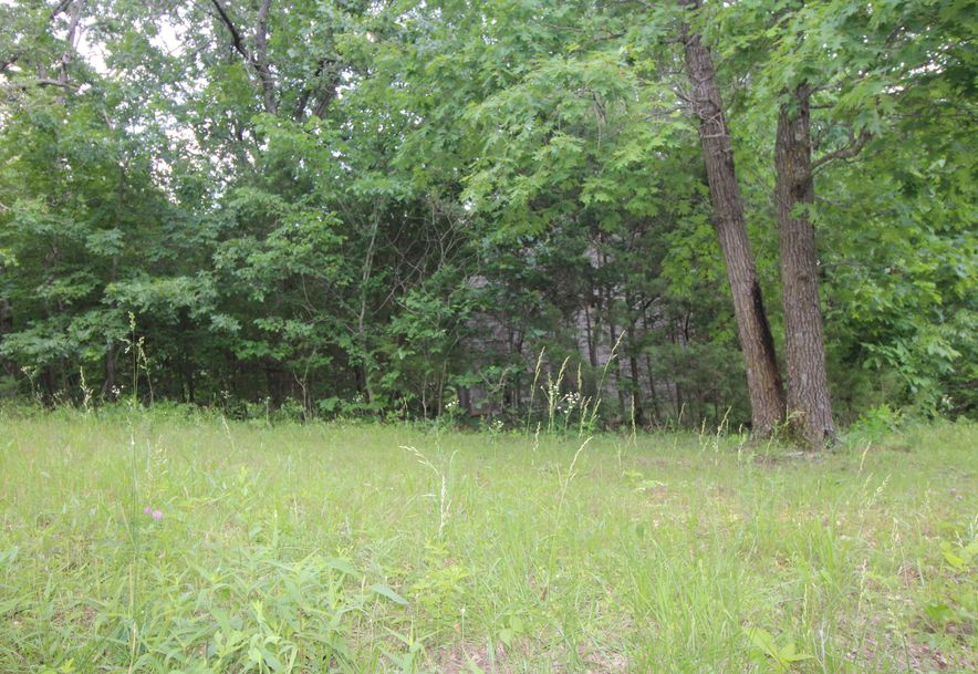 8901 North Beards Bluff Lane Fair Grove, MO 65648 - Photo 45