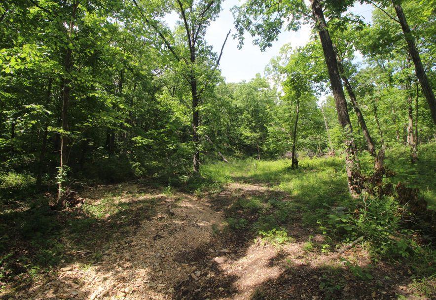 8901 North Beards Bluff Lane Fair Grove, MO 65648 - Photo 64