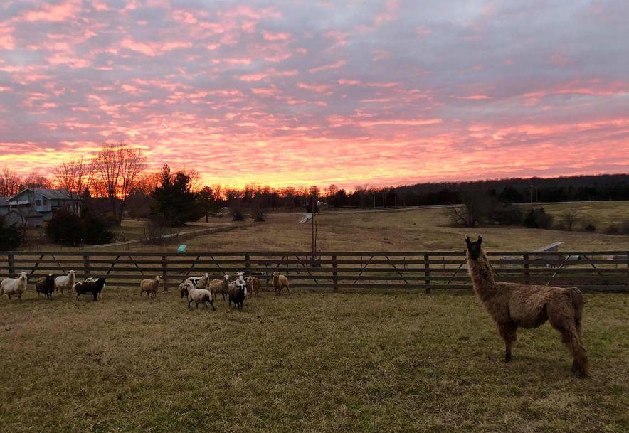 7254 North Farm Rd 105 Willard, MO 65781 - Photo 37