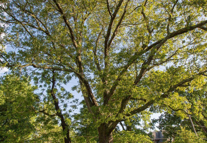 1256 Hayden Court Springfield, MO 65804 - Photo 53